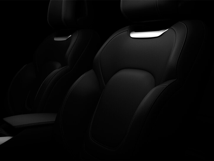 Basalt Black leather upholstery
