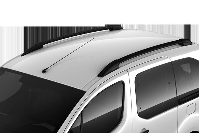 Barres de toit longitudinales