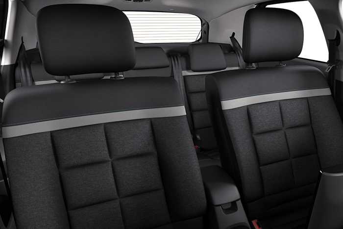 'Wild' Grey ambiance with Advanced Comfort seats