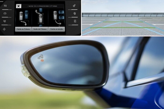 Park Assist and blind spot monitoring system