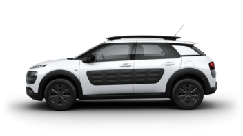 C4 Cactus Crossover - Business