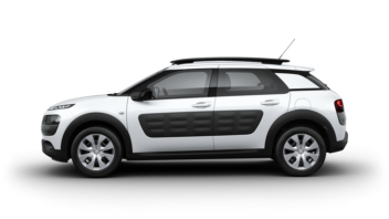 C4 Cactus Crossover - Feel
